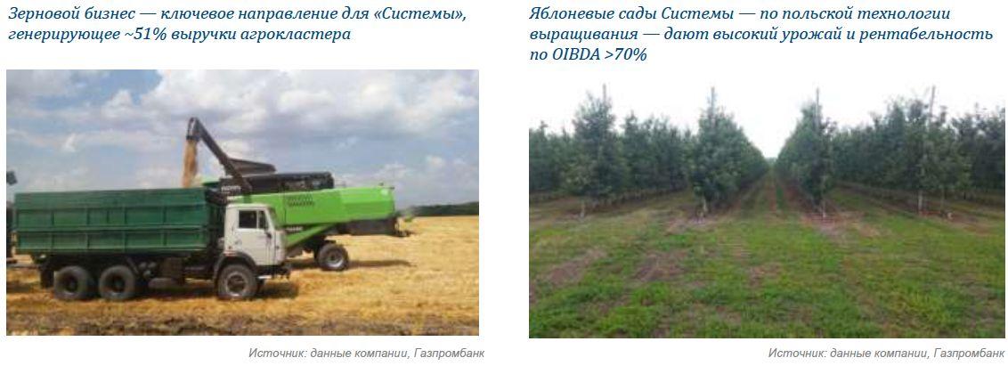 Сельское хозяйство. АФК «Система»: взгляд на перспективные материальные активы