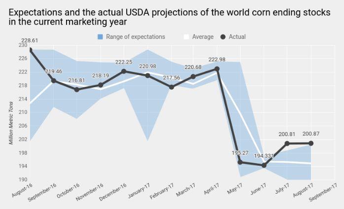 Кукуруза зреет для «быков»